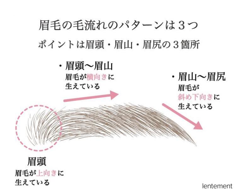 眉毛の毛流れの3つのパターン