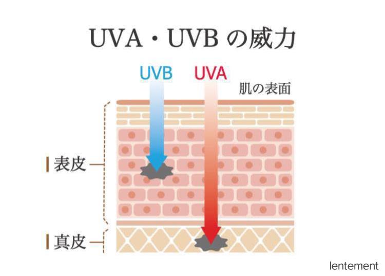 UVA・UVBの威力